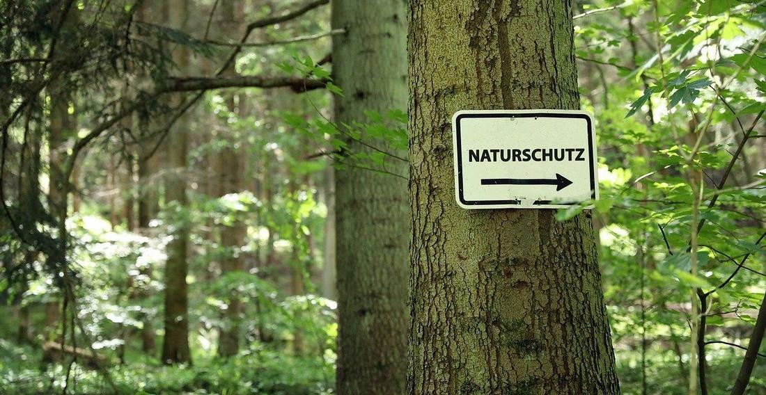Klimaschutz, Naturschutz