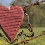 Herz im Stacheldraht