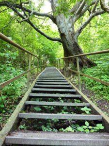 Treppe, die nach oben führt