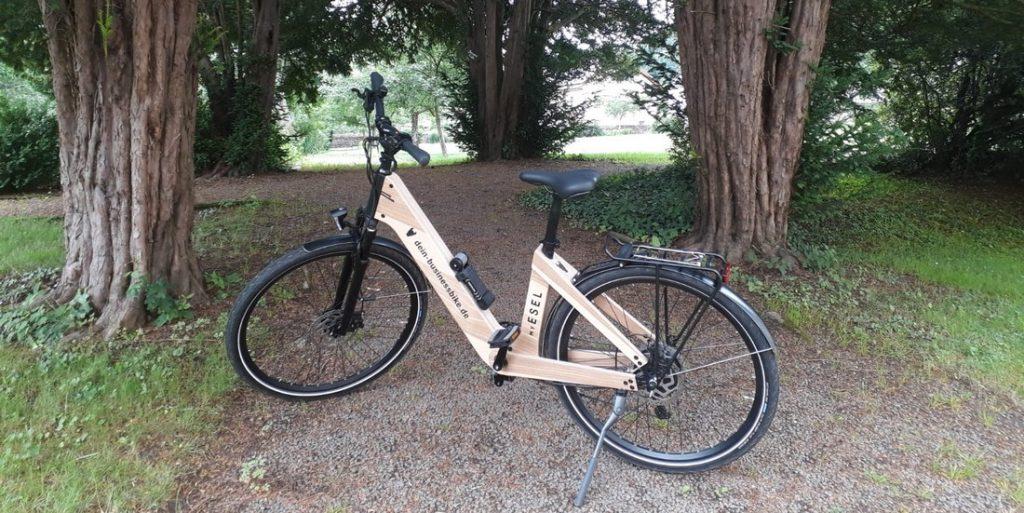 My Esel E-Bike aus Holz