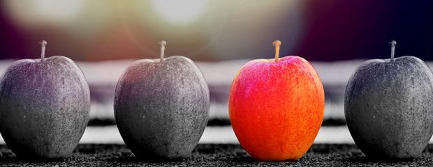 Ein roter Apfel zwischen grauen Äpfeln
