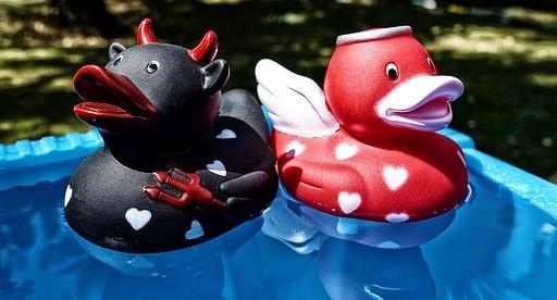 Schwarze und rote Plastikente schauen in verschiedene Richtungen